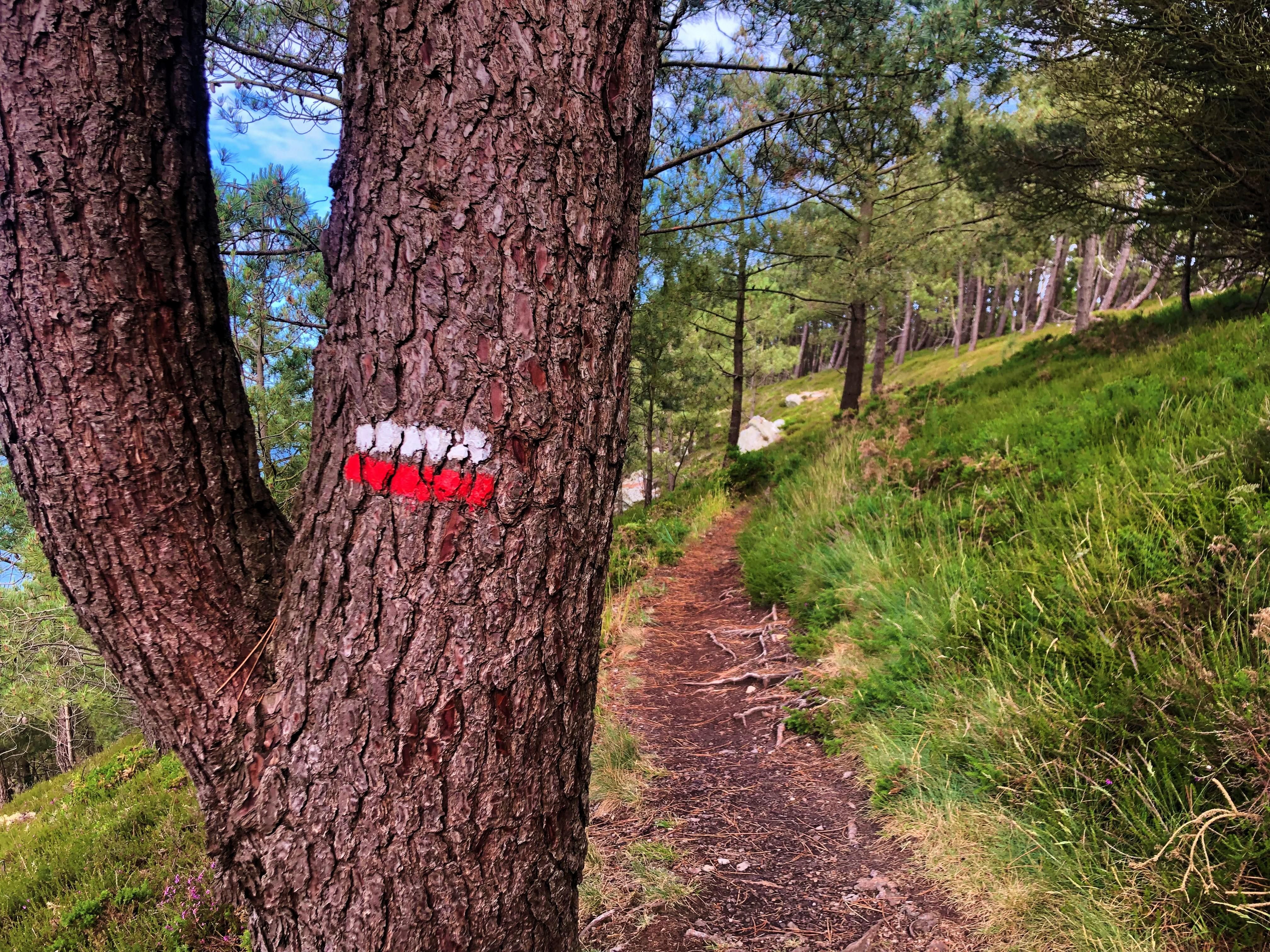 Balisage Pin Sentier Côtier
