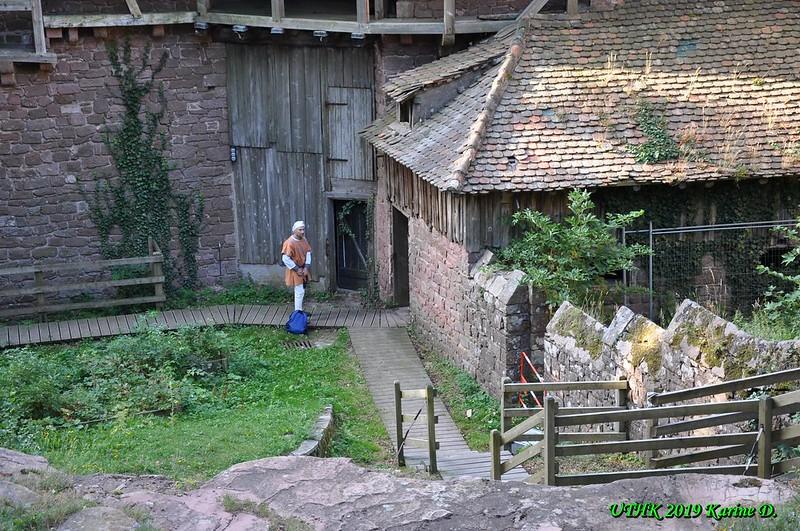 Château trail du Haut-Koenigsbourg